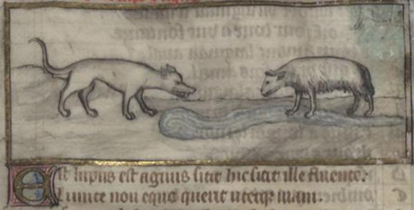 BNF loup et l'agneau