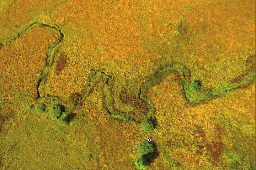 La Godivelle tourbières du lac d'en bas 2